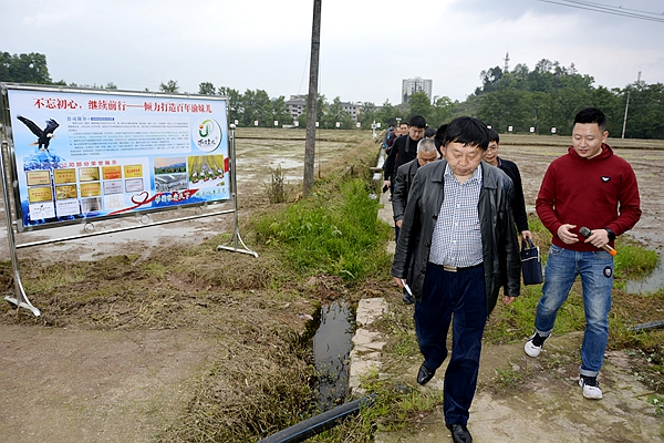 涪陵区人大常委会调研渝米集团农业面源污染防治情况